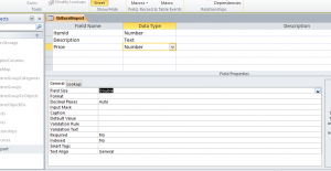 import excel into access vba screenshot showing data type of columns